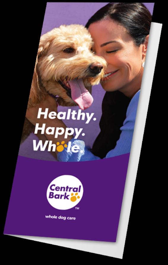 Central Bark Brochure