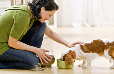 Dog Tips for National Nutrition Month