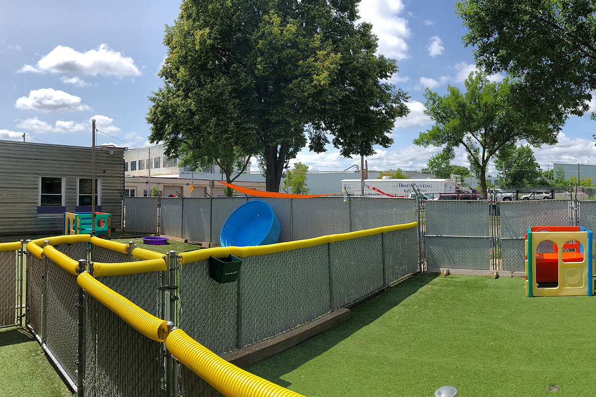 Central Bark Eastside Outdoor Play Area