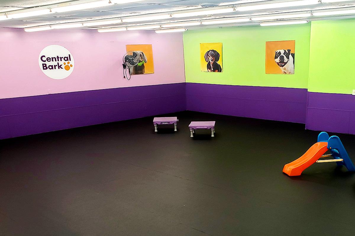 Central Bark New Berlin indoor play area