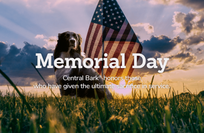 Military Dogs and Memorial Day
